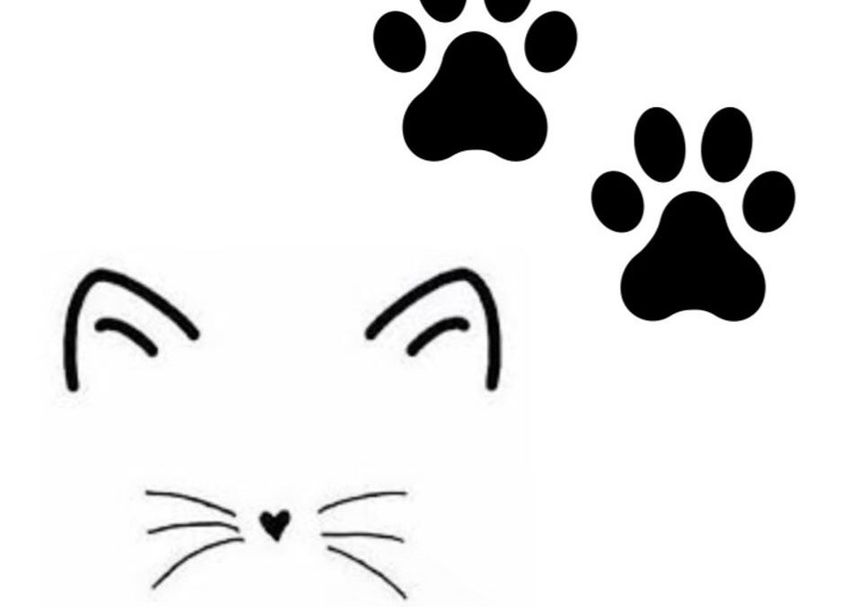 Paws and Whiskers Pet Service